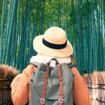 観光案内サイネージが京都嵐山に登場! 周遊を促す3つのポイント