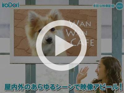 iroDori紹介ムービー02
