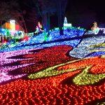 LEDビジョン活用のショーも! 東武動物公園ウインターイルミネーション